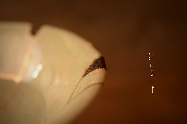 kokusogai_a037